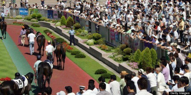 NIIGATA, JAPAN - AUGUST 25: Horses are paraded during the JRA Niigata Race at Niigata Race Course where...