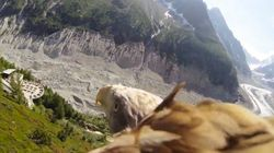 鷲の視点で空を飛べる動画