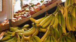 普通に買ったバナナから「世界最強の毒グモ」の子が大量に:英国