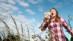 アレルギー治療薬に光? 症状発生抑えるタンパク質を特定