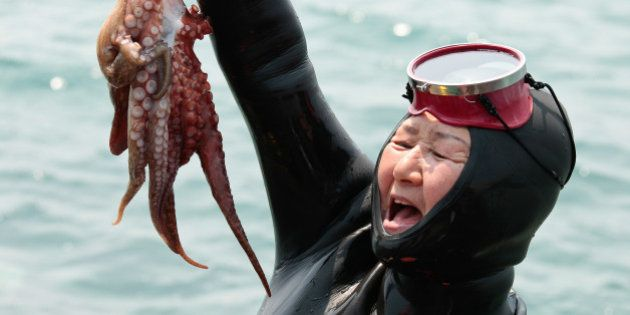A jubilant Haenyeo (Jeju diving woman) proudly raises her catch at the 5th annual Haenyeo Diving Festival...