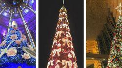 死ぬまでに見たい世界のクリスマスツリー10【写真ギャラリー】