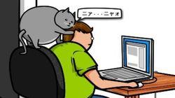「ネコ vs インターネット」宿命の対決