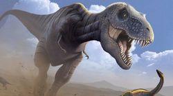 恐竜絶滅、隕石衝突後の酸性雨が原因か
