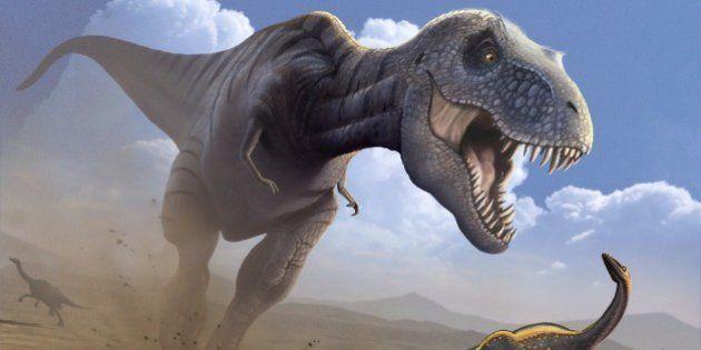 恐竜絶滅、隕石衝突後の酸性雨が原因か 千葉工業大学など実験