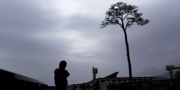 RIKUZENTAKATA, JAPAN - MARCH 11: A man looks at a single pine tree left standing after the March 11,...