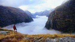 「世界一美しい散歩道」眺めるだけで心洗われるニュージーランドの絶景【画像】