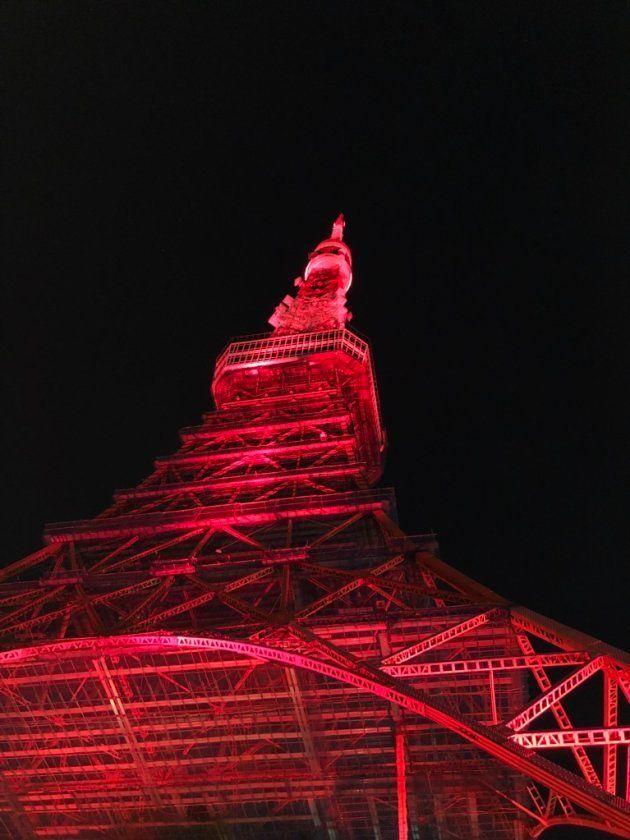 東京タワーを足元から見上げる