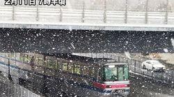 東京や大阪で雪 千葉は積雪5センチ観測 午前中がピーク