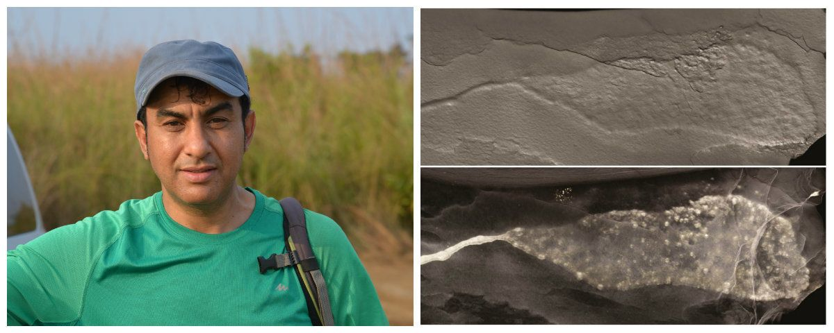 Un géologue d'origine marocaine a participé à une découverte scientifique