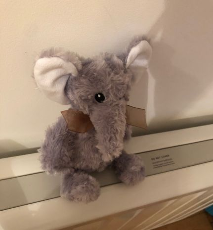 Lost Toy Elephant Given Bath And Blow-Dry By Stranger – But Still Needs To Find Its