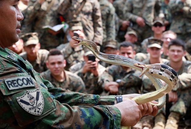 Ταϋλάνδη: «Γενναίοι» στρατιώτες τρώνε φίδια, σαύρες και προφυλακτικά με