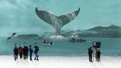 「捕鯨は日本の伝統」では、欧米人には通じない。その理由を探ってみえてきたこと