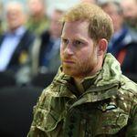 Royals: Prinz Harry wollte Nashorn retten – dann griff das Tier