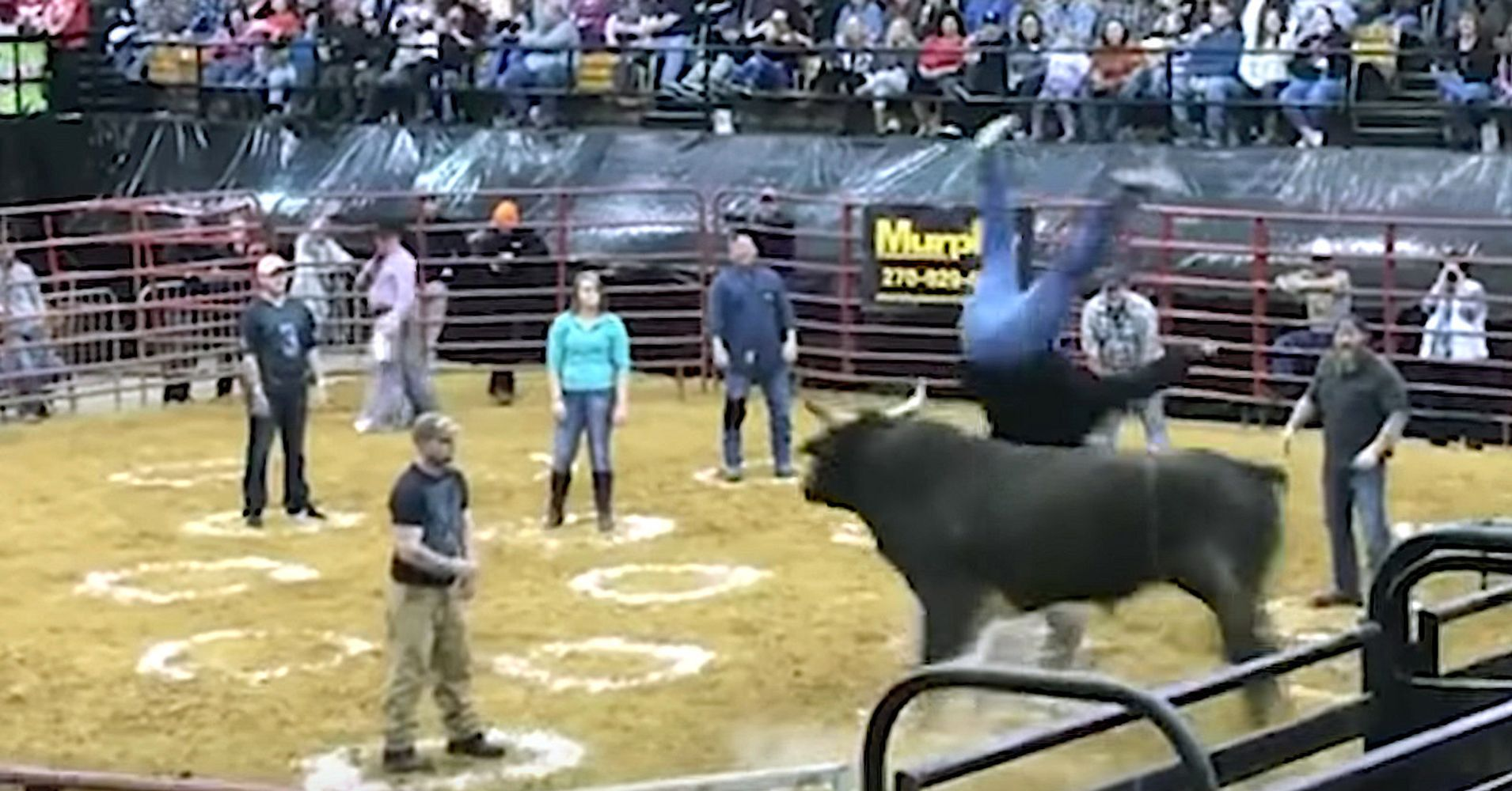 Rodeo Crowd Shocked As Bull Flips 2 In Cowboy Pinball