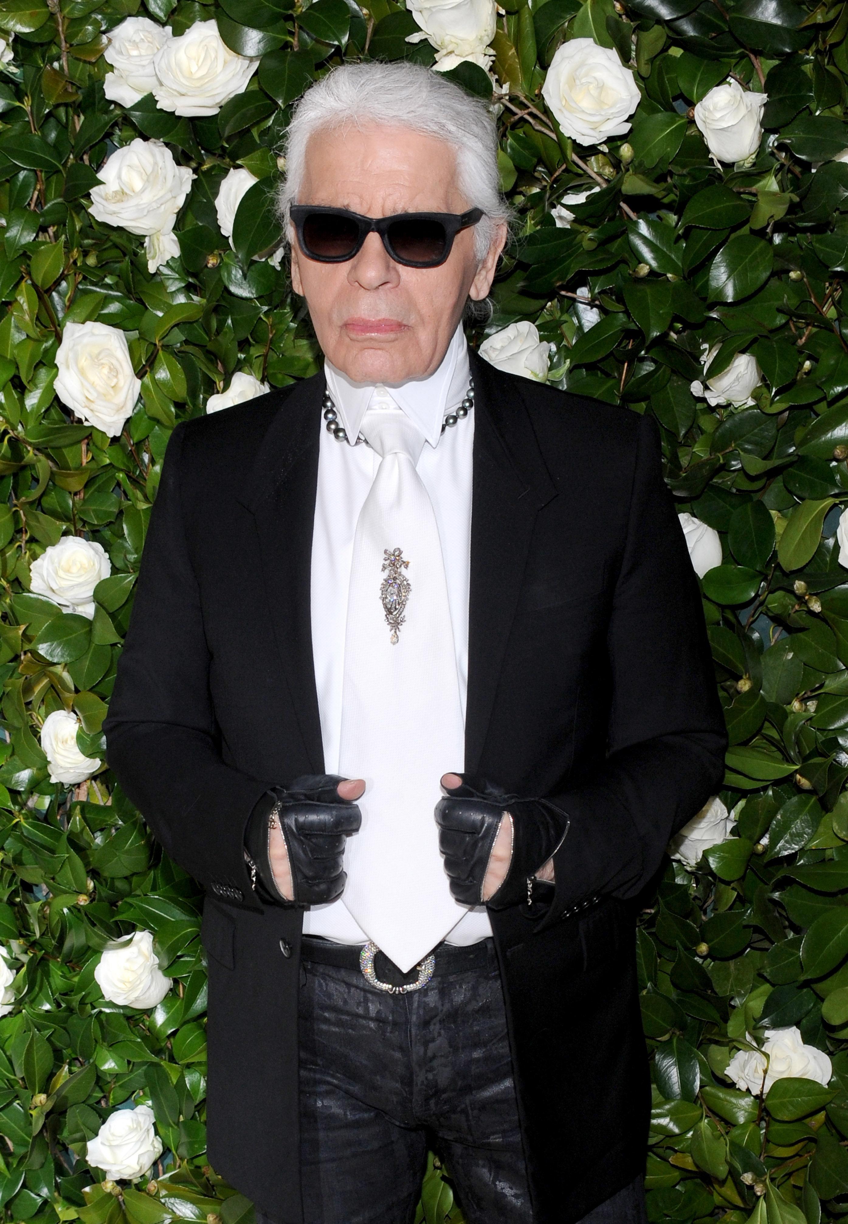 NEW YORK, NY - NOVEMBER 5: Karl Lagerfeld attends the Museum of Modern Art Film Benefit : A Tribute to Tilda Swinton on November 5, 2013 in New York City. Credit: Jon Palmer / MediaPunch /IPX