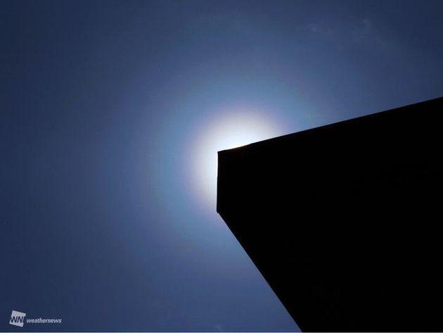 静岡で魔のサークル「花粉光環」が出現 すでに1都14県で花粉が本格化