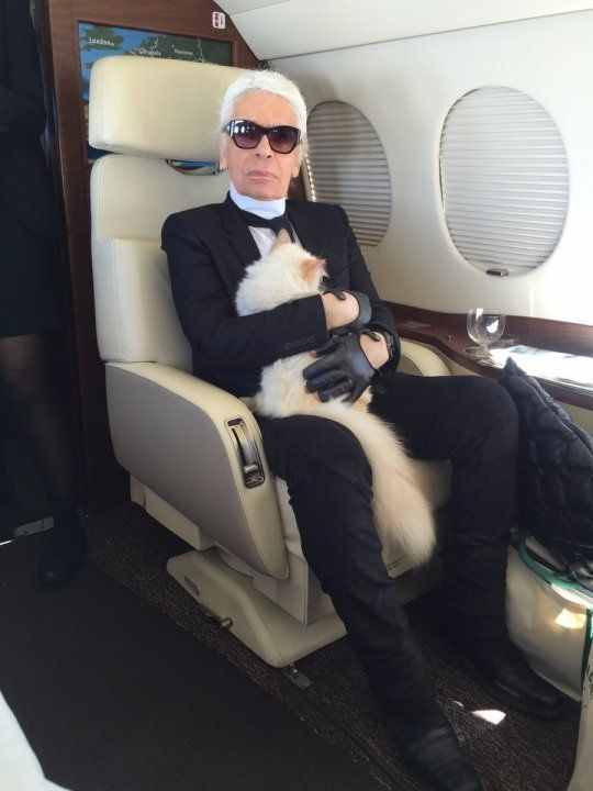 Karl Lagerfeld's Cat Choupette Set To Inherit Sizeable Chunk Of Chanel Designer's Multi-Million