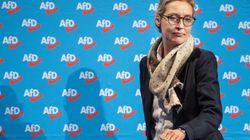Neuer Wirbel um Weidel-Spenden: AfD legt Bundestag falsche Liste