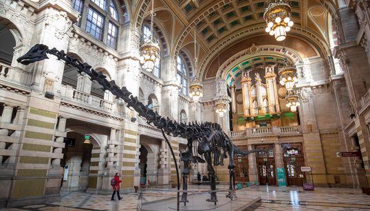L'extinction des dinosaures causée par un astéroïde ou des volcans? C'est