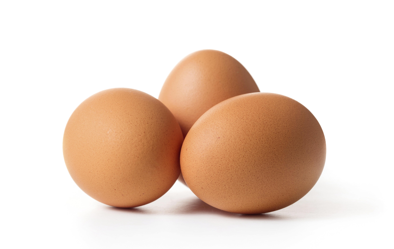 오늘(23일)부터 달걀 껍데기 보면 알 수 있는