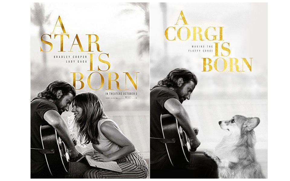 Hundebesitzer photoshoppt Corgi in Film-Poster –und es ist so