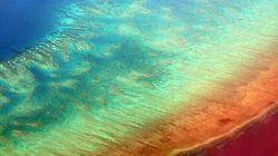 Η Αυστραλία θα πετάξει 1.000.000 τόνους υγρών αποβλήτων στον προστατευόμενο Μεγάλο Κοραλλιογενή