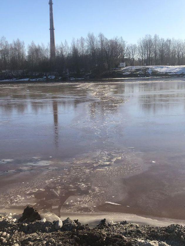 에스토니아 노동자들이 얼어붙은 강에서 구조한 개의