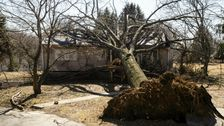 High Winds Cause Destruction, Power Loss To Thousands In U.S. And Canada
