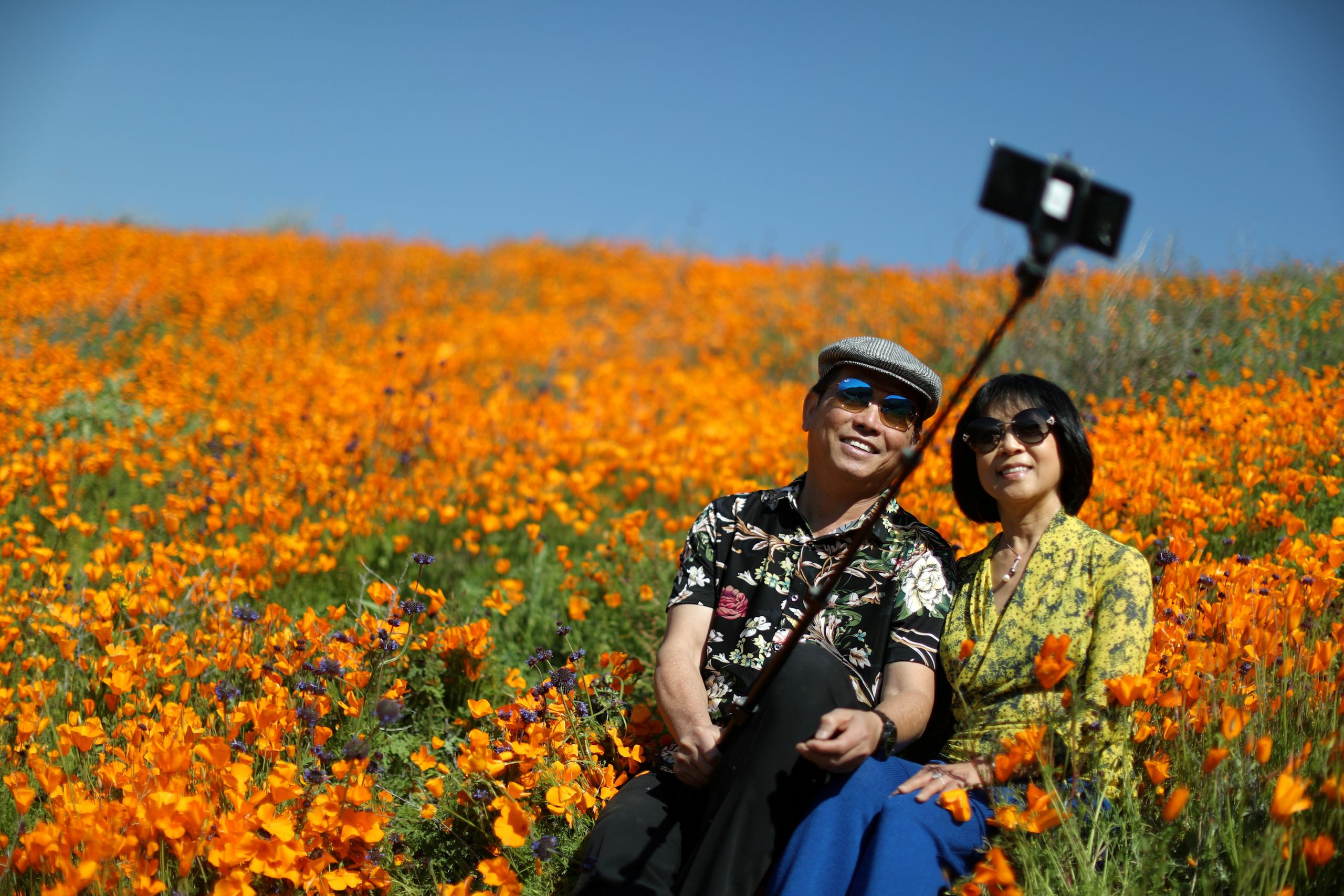 A couple takes a selfie photo in a super bloom of poppies in Lake Elsinore, California, on Feb. 27, 2019.