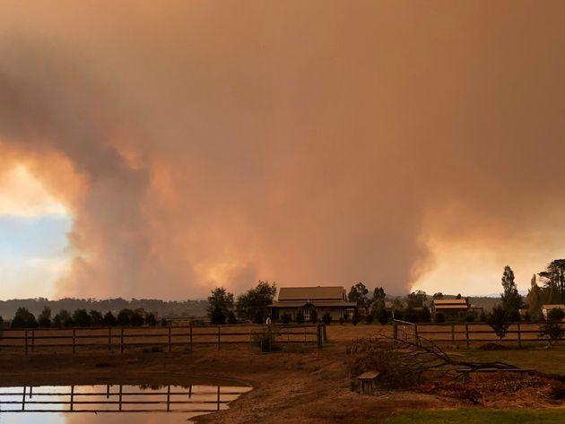 Μεγάλες δασικές πυρκαγιές μαίνονται στη νότια