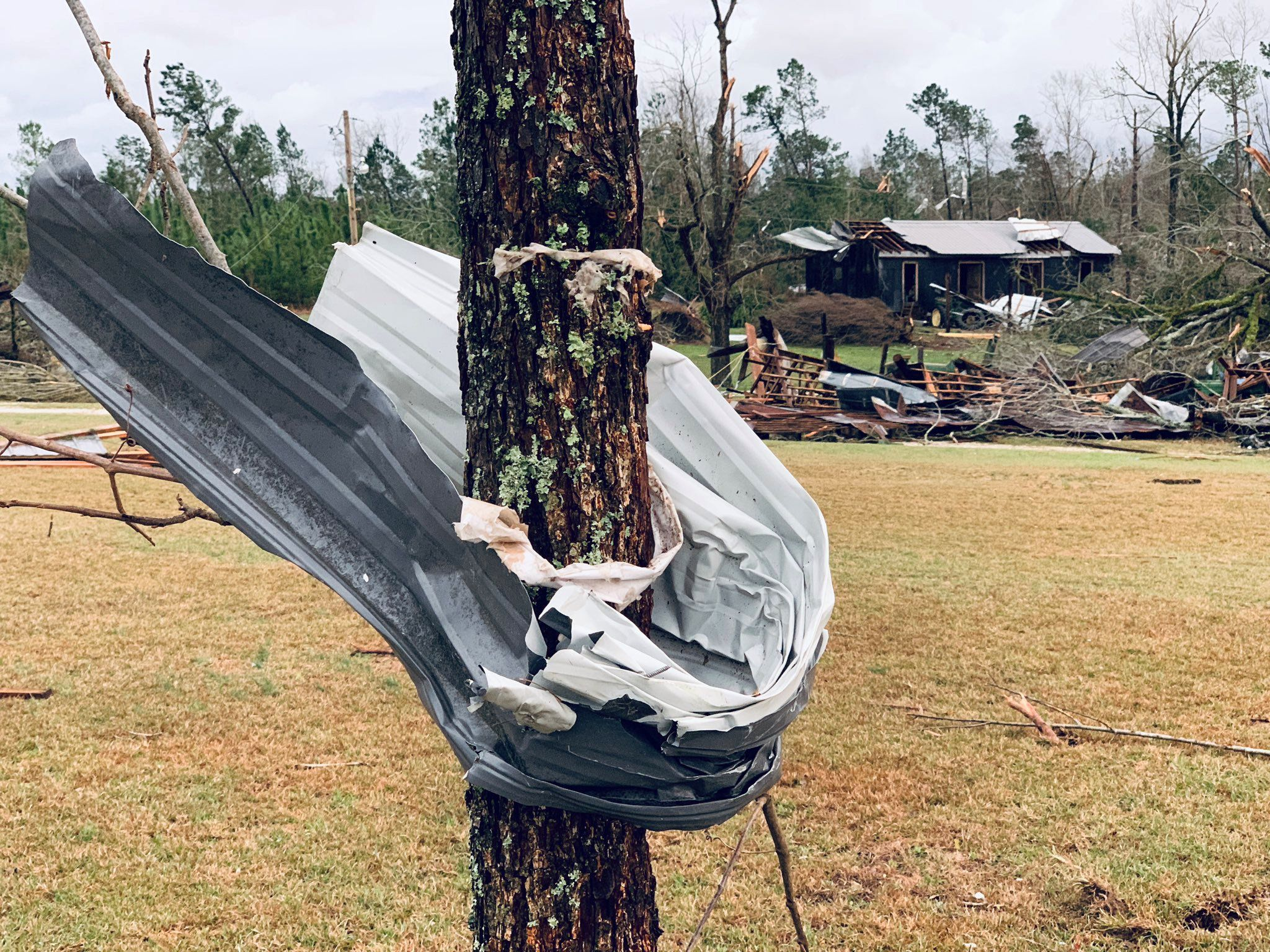 A piece of metal is seen wrapped around a tree following a tornado in Beauregard, Alabama, U.S. in this March 3, 2019 still image obtained from social media video on March 4, 2019.