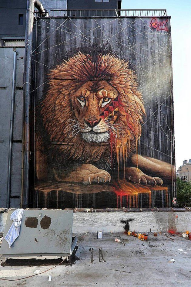 South African Street Art Brings Endangered Wildlife To