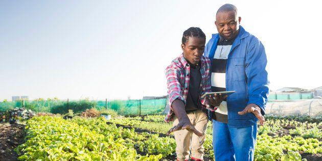 Infrastructural Development Is Inhibiting Agricultural Development For Smallholder