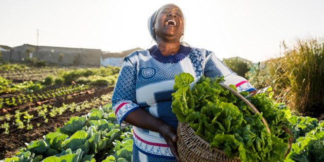 Addressing Land Redistribution Through The One Household, One Hectare