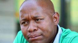 President Zuma's Son Edward Apologises For Gordhan, Hanekom