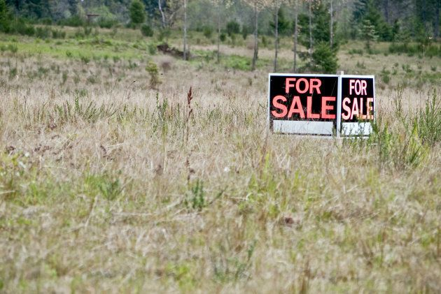 Government's Final Resolution On Land Is Vague – Perhaps Deliberately