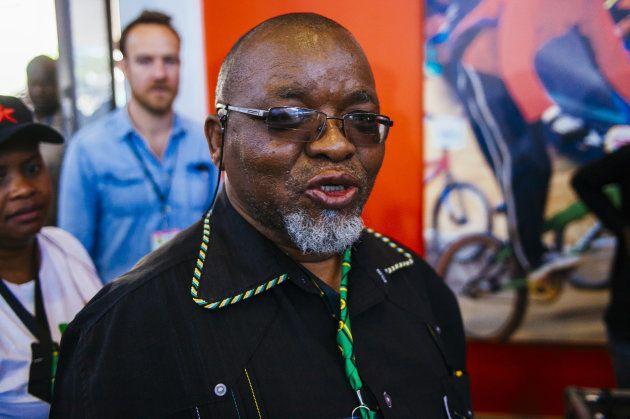 Mantashe Voices Concerns Over Zama-Zamas, Mining Charter and