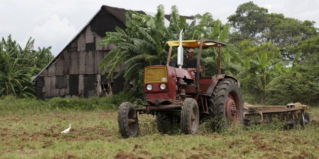 Land use intensification is an important pathway, but sustainable intensification may not occur without...