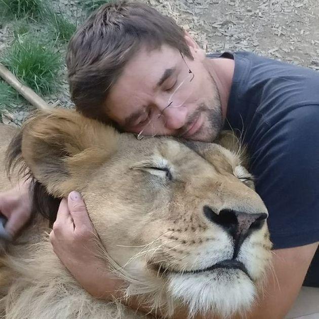 Τσεχία: Τον έφαγαν λιοντάρια που φρόντιζε στην αυλή