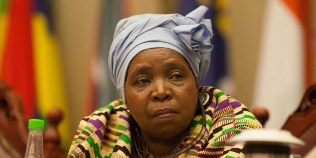 This King Has VERY Important Advice For ANC President Hopeful Dlamini-Zuma