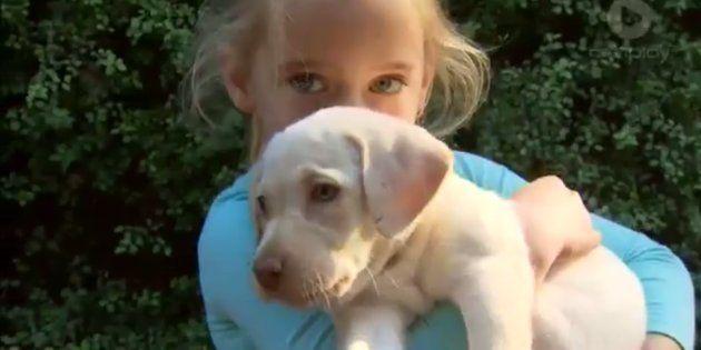 Sasha the Labrador puppy and Maia Hood have been