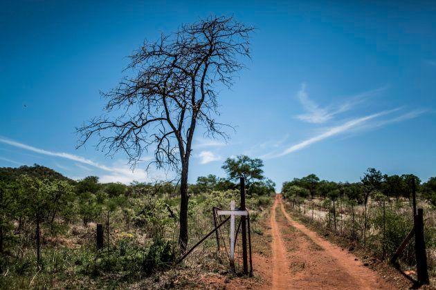 AfriForum Rubbishes Decrease In Farm Murder Rates, Claiming