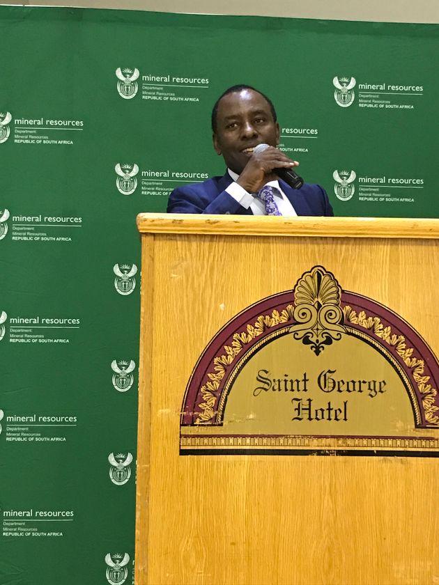 Mineral resources minister Mosebenzi Zwane at the