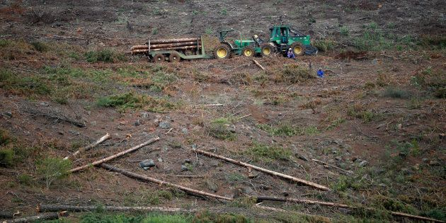 Workers rest near a tractor collecting timber in Howick, KwaZulu-Natal Province, South Africa March 9,