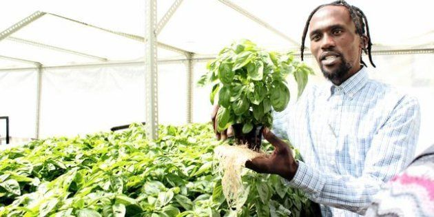 Nhlanhla Mpati is a small-scale entrepreneurial farmer who started a roof-top farm on top of the Chamber...