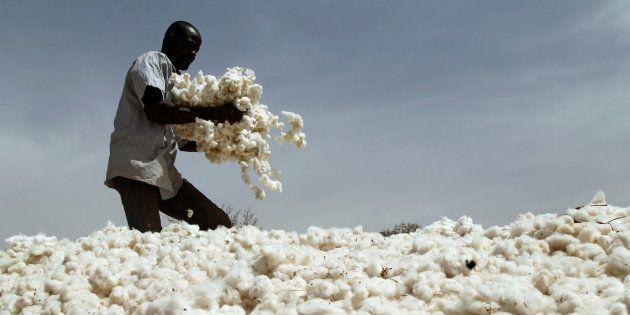 A farmer works in a cotton field in Kongolekan village near Bobo-Dioulasso, Burkina Faso March 7,