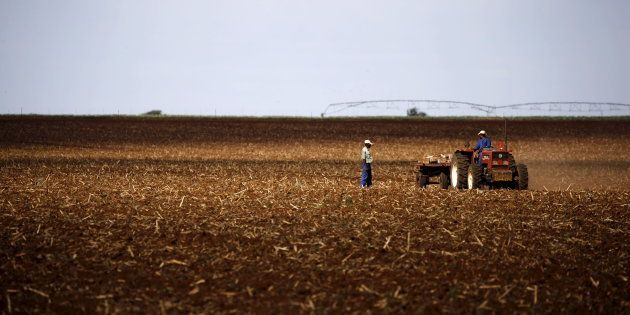 Farmers work on a land outside Lichtenburg, a maize-growing area in the North West province, South Africa...
