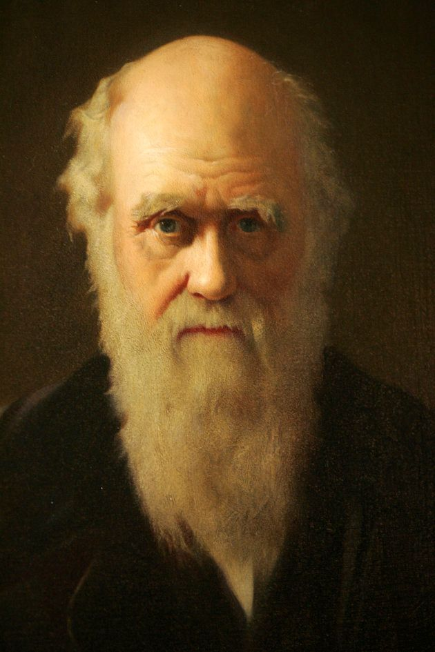A detail of British artist John Collier's 1883 painting of Charles Darwin is displayed as part of an...