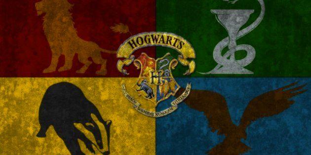 Your Hogwarts House Unpacks Your Psychological